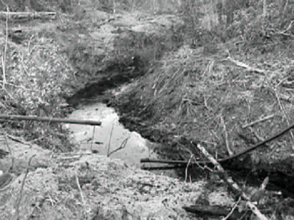Spcc normans environmental blog you pronofoot35fo Choice Image